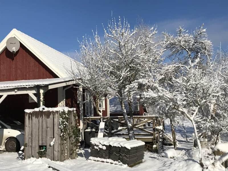 pinewood-lodge-i-snö